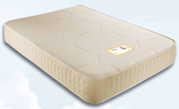 Anti Bed Bug Memory Foam Mattress-619