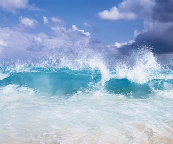 white-coastal
