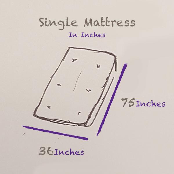 single-mattress-size-inches